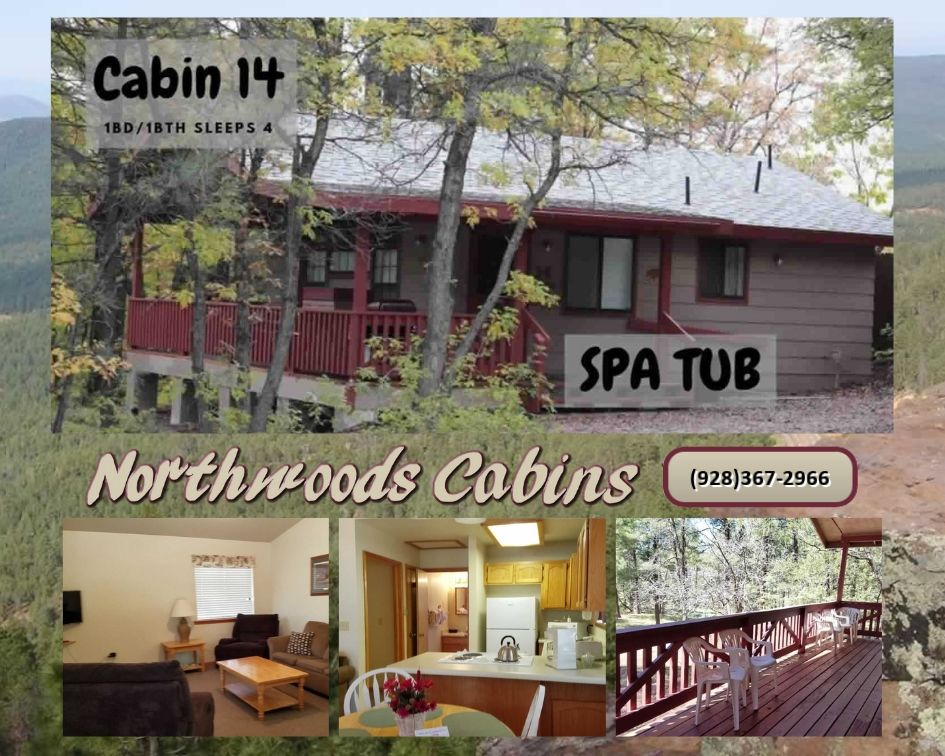 Cabin 14: 1 Bedroom/1 Bath Sleeps 4