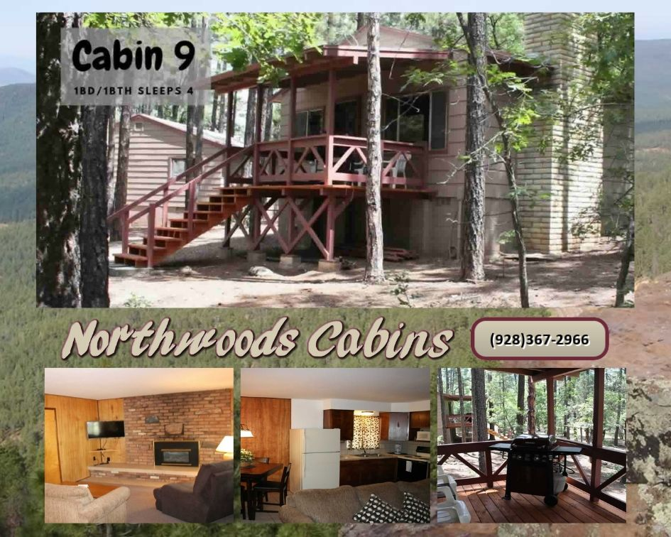 Cabin 9: 1 Bedroom/1 Bath Sleeps 4